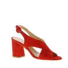Di Lauro Karima Dames Sandalet