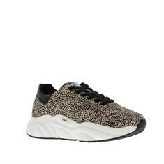 HUB Rock Dames Bubbly Sneaker